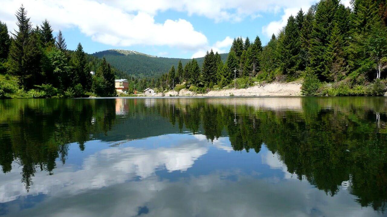 بحيرة السمك